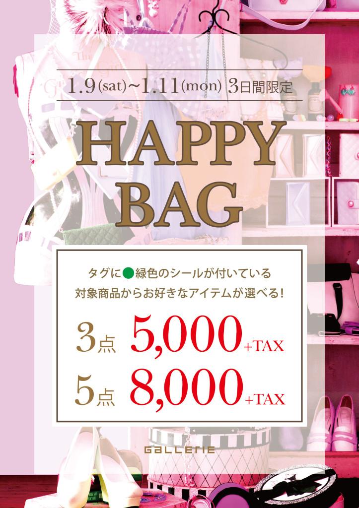 20160109_HAPPY BAG_webバナー_インスタ用